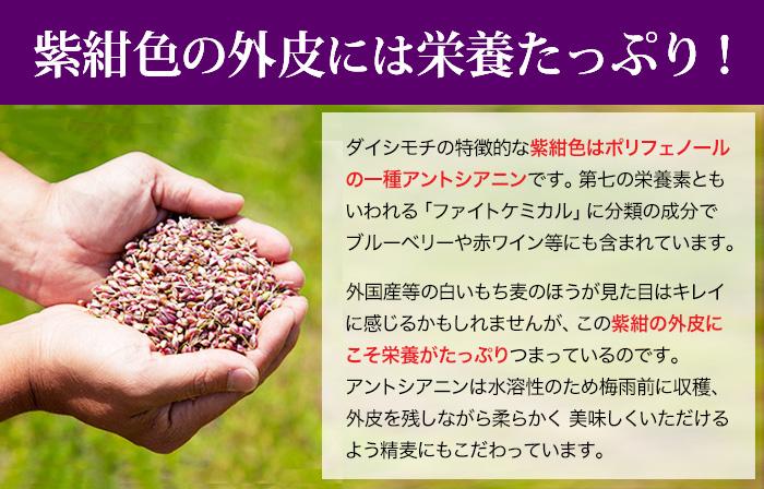 もち麦ポリフェノール